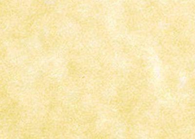 Menu Paper Style 515 - Gold Parch